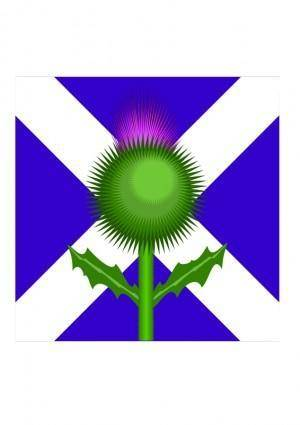 free vector Scottish Thistle and flag