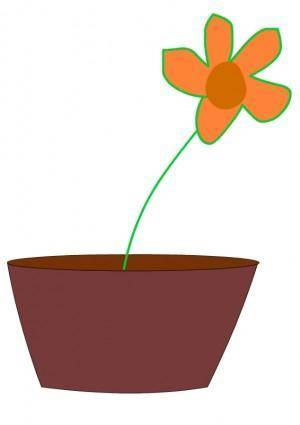 free vector Flower in a vase