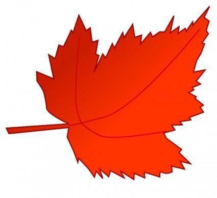 free vector Leaf 2