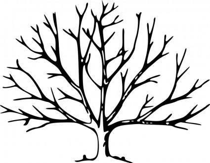Tree 100967