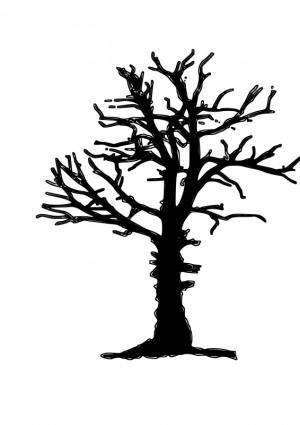 Dead tree silhoutte