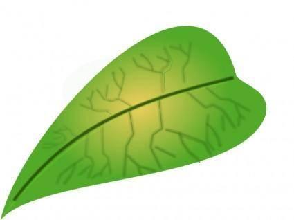 free vector Green leaf