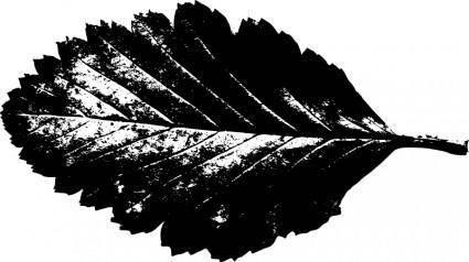 Leaf silhouette 3