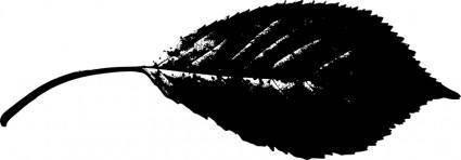 Leaf silhouette 2