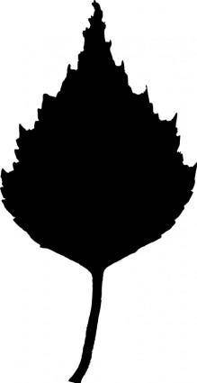 Birch leaf silhouette