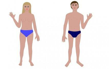 Human body, man and woman