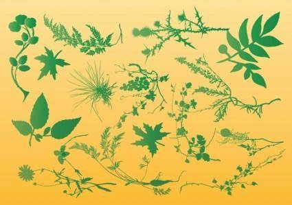 free vector Plants Vector Graphics