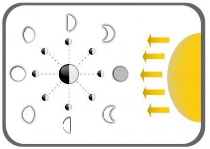 free vector Diagram of Moon faces
