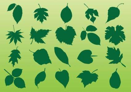 free vector Plant Leaves Vectors