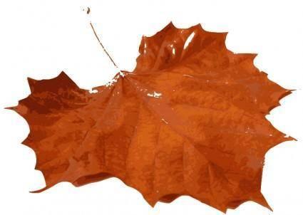 M Leaf 01