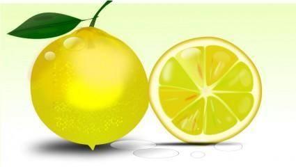 free vector Lemon