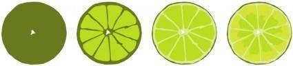 free vector Progressive limes