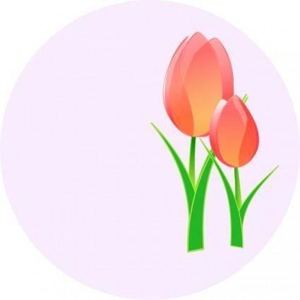free vector Tulips