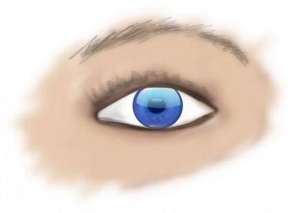 Eye 102177