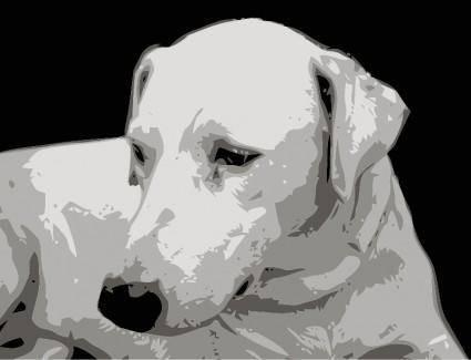 free vector Dog