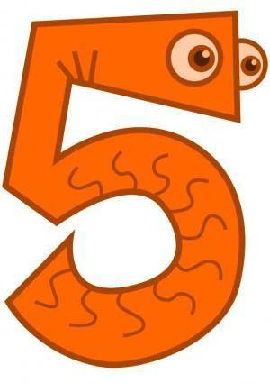 Five - animal