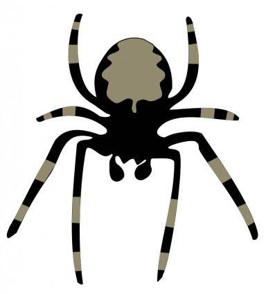 free vector Spider