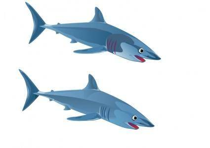 free vector Blue Shark