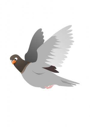 free vector A Flying Pigeon
