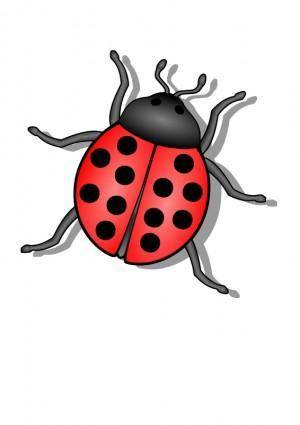 free vector Lady Bug