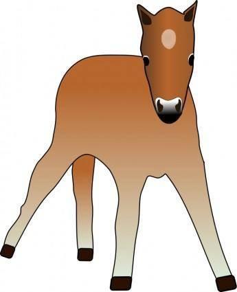 free vector Foal