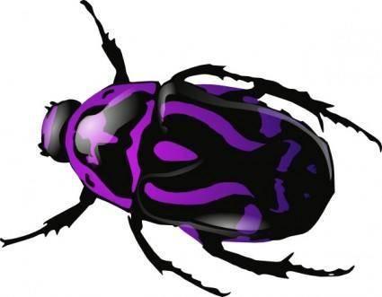 Purple Beetle clip art