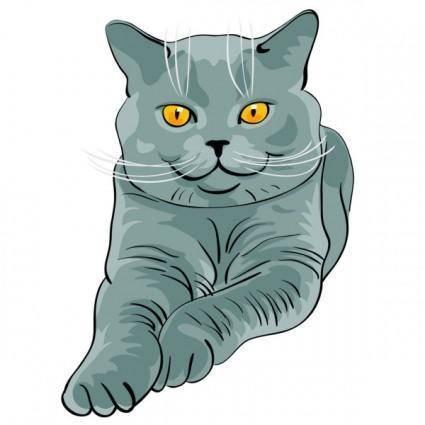 Animal cat 02 vector