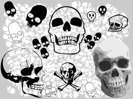 free vector Skulls Vectors