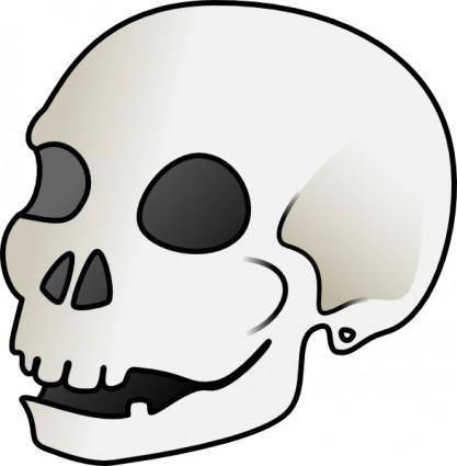 Human Skull clip art