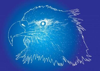 free vector Eagle Sketch