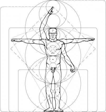 Vitruvian Man clip art