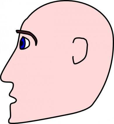 Man Head Side Bald clip art