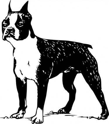 free vector Boston Terrier clip art
