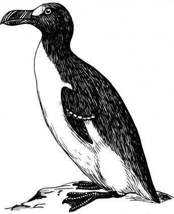 free vector Penguin clip art