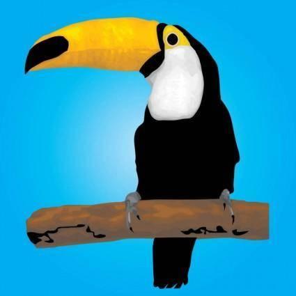 free vector Toucan Bird