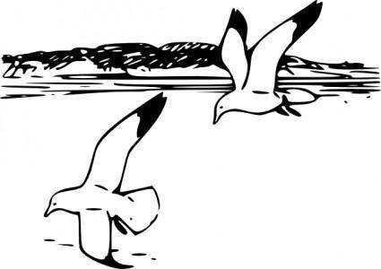Flying Sea Gulls clip art