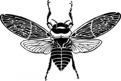 Bee Top View clip art