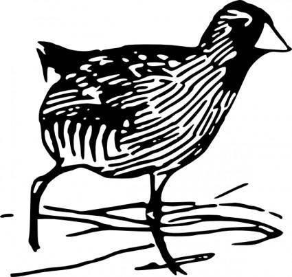 free vector Walking Chick clip art