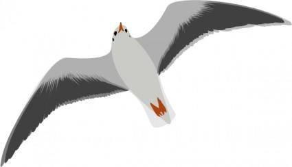 free vector Sea Gull Seagull clip art