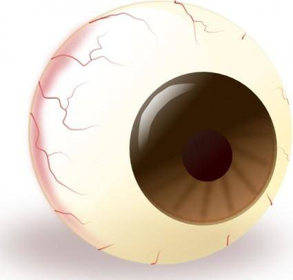 free vector Ecuabron Brown Eye clip art