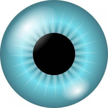 Iris And Pupil clip art