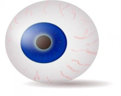 Eyeball Blue Realistic clip art