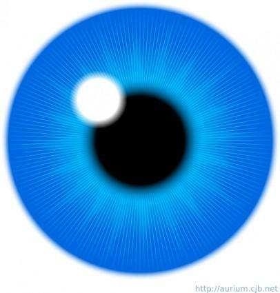 Blue Eye Iris clip art