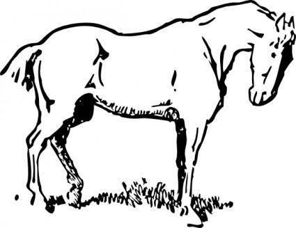 free vector Small Eyed Horse clip art