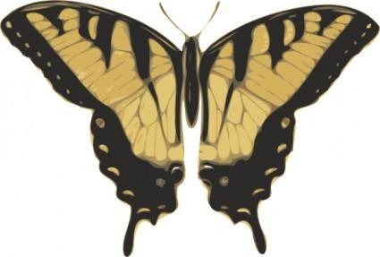 Butterfly Top View clip art