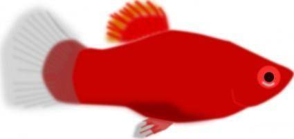 Red Aquarium Fish clip art