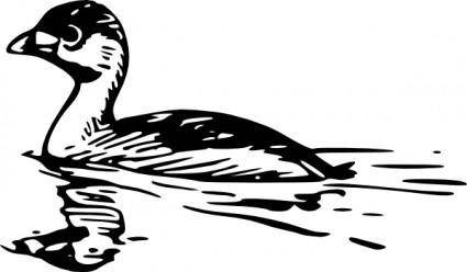 Swimming Duck clip art