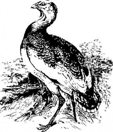 free vector Big Bird clip art