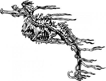 Seahorse Skeleton clip art