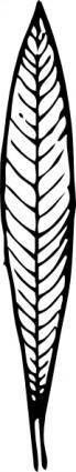 free vector Oleander Leaf clip art